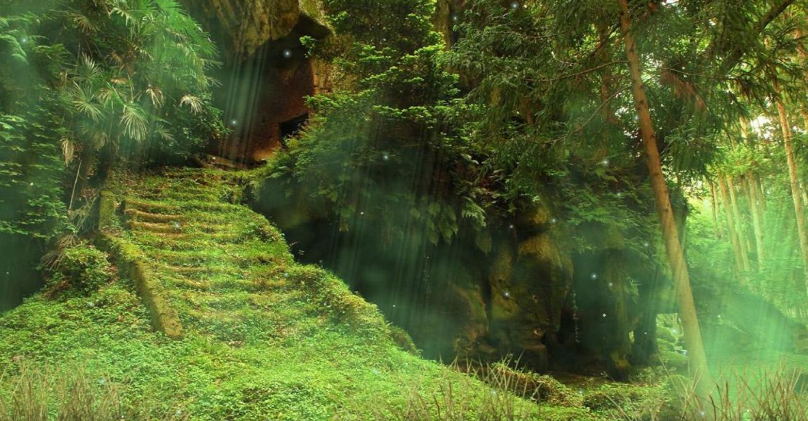 A r almod var los apretados s mbolos del bosque - Casitas en el bosque ...